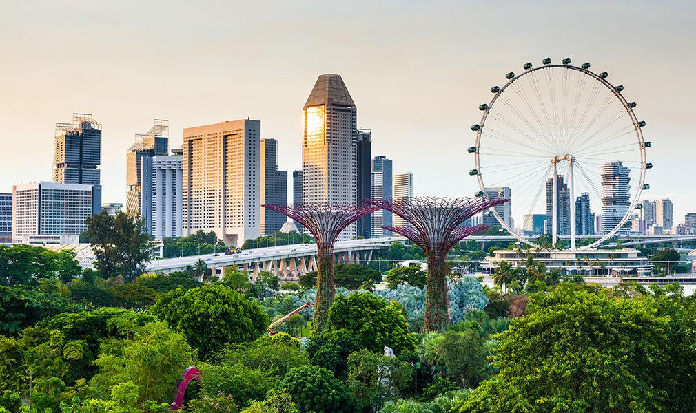 образование в Сингапуре, Освіта в Сінгапурі