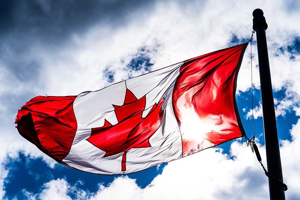 Канада: варіанти освіти